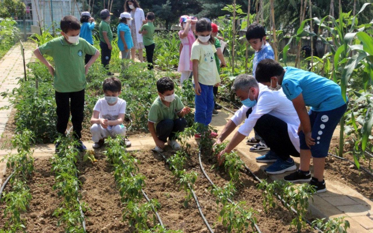 Bursa'daki okul etkinlikleri öğrencilere yaşam becerisi kazandırıyor