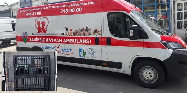 İzmit Belediyesinden ücretsiz hayvan ambulansı hizmeti