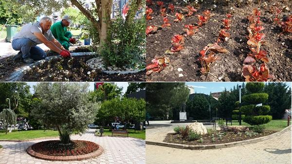 İzmit Belediyesi çiçekleri toprakla buluşturmaya devam ediyor