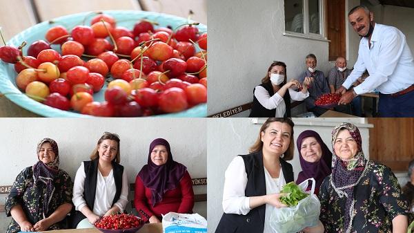 Kulfallı kirazını ve üzümünü İzmit Belediyesi ulusal pazara taşıyacak